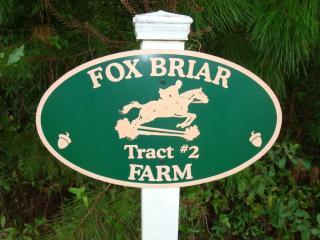 Tract 2 Cavallo Trail, Lloyd FL