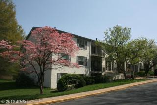 5815 Rexford Drive #788, Springfield VA