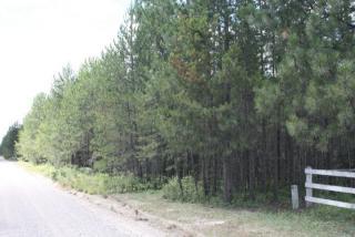 Tbd E Bridges Road, Elk WA