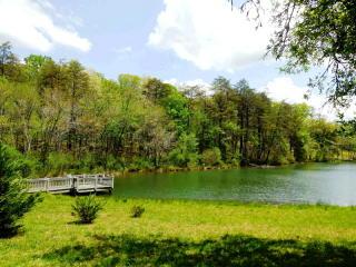 93 Fox Lake Road, Blairsville GA