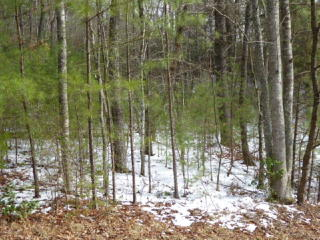 Lot 58 Souther Mill Ests, Blairsville GA