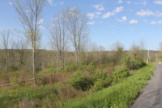418 Saddlemire Hill Road, Sloansville NY
