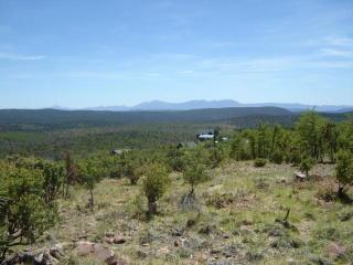 Lot 9 North Myrtle Point Trail, Payson AZ