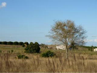 Turkey Acre Lane, Howey-in-the-Hills FL