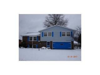4123 Dennis Lane, Brunswick OH