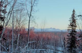 6301 West Sunrise Road, Wasilla AK