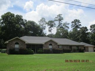 106 Water Oak Drive, Village Mills TX