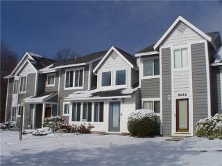 1624 Snowfield Way, Hidden Valley PA
