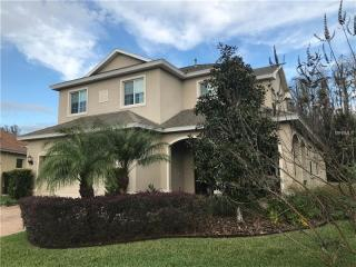 19433 Red Sky Court, Land O' Lakes FL