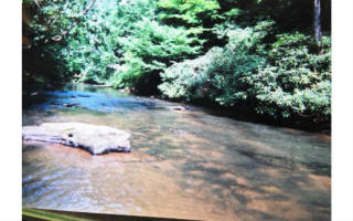 LOT56 Riverbend Trail, Ellijay GA