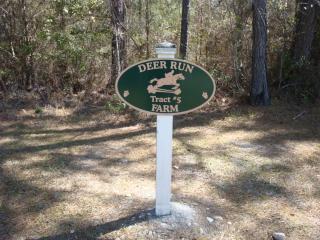 Tract 5 Cavallo Trail, Lloyd FL