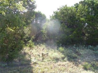 29101 Greenwood Drive, Whitney TX