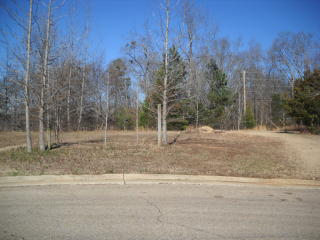 Lot 42 Pin Oak Court, Saltillo MS