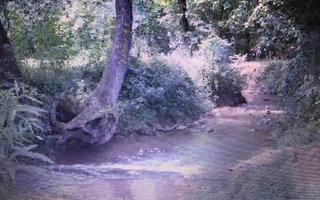 1356 Brasstown Creek Mead, Young Harris GA