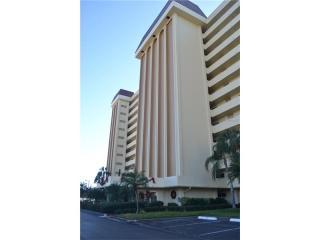 4550 Cove Circle #205, Saint Petersburg FL