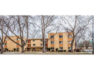 8345 South King Drive #3A, Chicago IL