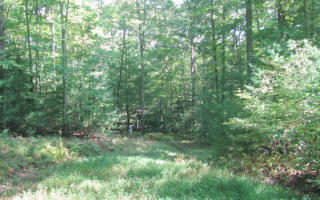 LOT4B Shallow Creek Vista, Blue Ridge GA