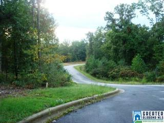 Lot 1 Loberry Trail Trail, Jacksonville AL