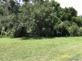 4724 South Sawmill Way, Homosassa FL