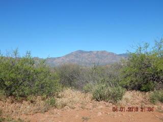 172 B E Morning Glory Lane, Tonto Basin AZ