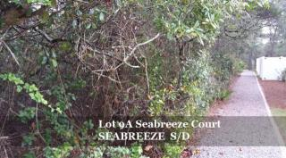9A Seabreeze Court, Santa Rosa Beach FL