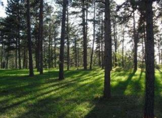 23639 Wilderness Canyon Road, Rapid City SD