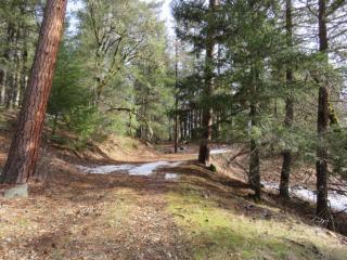 708 Timber Trail Road, Lewiston CA