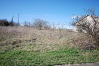 309 Buffalo Trace, Winchester KY