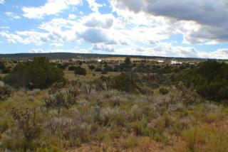 San Pedro Lane, Edgewood NM