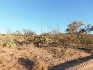 13530 Morton West, Tucson AZ