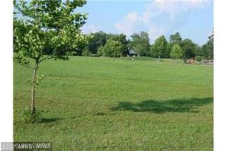 Lot 25 Bunchberry Ridge Court, Stephens City VA