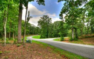 64 Ivy Ridge Court, Blue Ridge GA