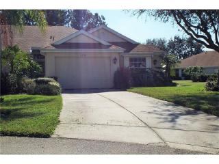 2310 New Orchard Court, Sun City Center FL