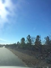 14 Pintail Way, Roberta GA