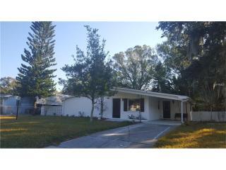 308 Papaya Drive, Tampa FL