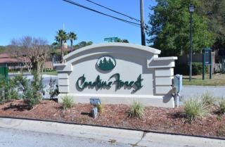 3568 Rain Forest Drive West, Jacksonville FL