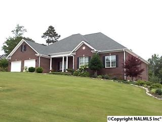 190 Wisteria Way, Scottsboro AL