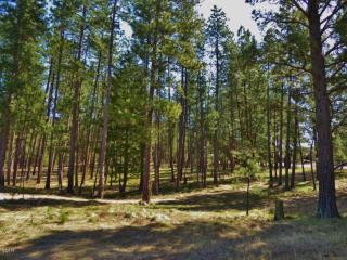 Lot 34 Turah Mdws, Clinton MT