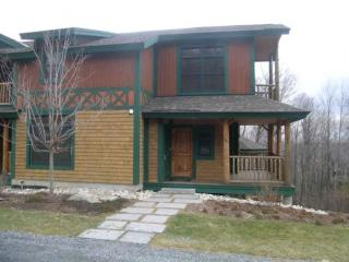 8 A Basswood, Stratton, VT
