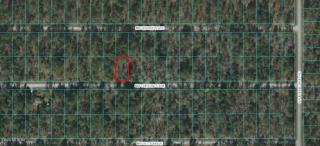 Lot 40 Northwest Chestnut Avenue, Dunnellon FL