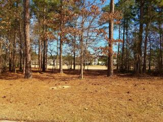 1507 Grandiflora Drive, Leland NC