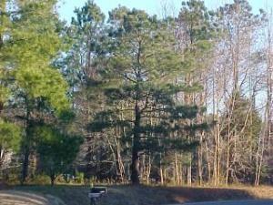 3 Wood Cove Drive, Showell MD