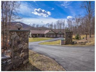 56 Forest Drive, Livingston Manor NY