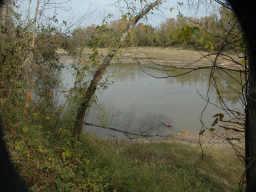 3423 Lazy River Drive, Sealy TX