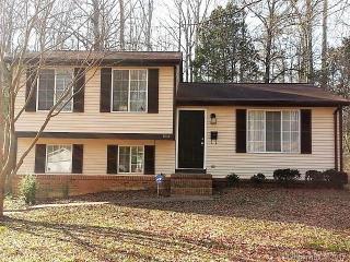 6203 Fringe Tree Drive, Charlotte NC