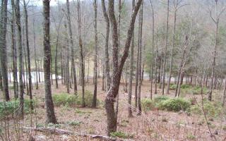 31 Whisper Woods, Hiawassee GA