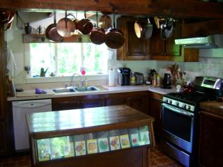 498 Perry Hill Road, Cherry Valley NY