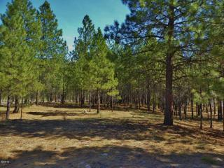 Lot 15 Turah Mdws, Clinton MT