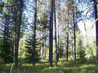 15 Spring Water Court, Donnelly ID
