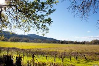 3683 Silverado Trail North, Saint Helena CA